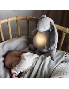 Szumiący króliś z lampką Silver, Moonie